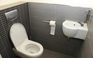 Идеи и главные этапы самостоятельного ремонта туалета